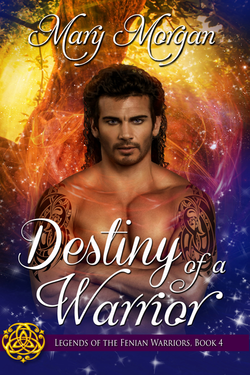 Warriors Lady (The Stones of Destiny Series Book 3)